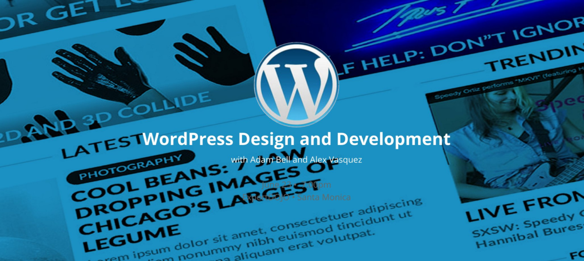 wordpress plugin basics